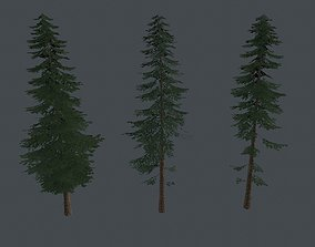 Game Ready Pine Trees 3D asset