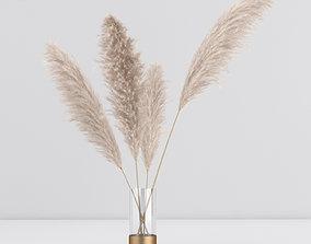 3D model pampas in vase 01