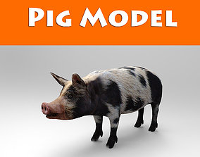 Black Wild Pig low poly 3D model game-ready