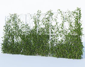 Virginia Creeper 3D