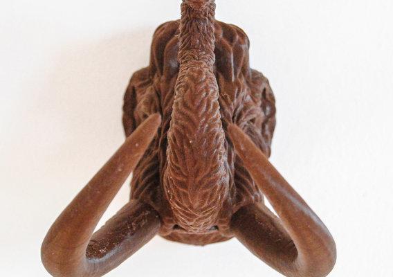Mammoth Bust