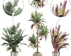 3D model Potted plants Set 32