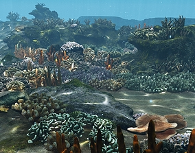 Underwater Coral Reef Habitat Ocean V3 3D asset