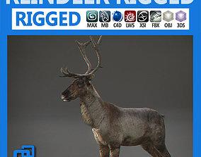 3D Rigged Reindeer
