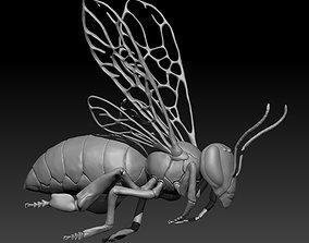 3D model Honey bee in flight