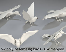 3D asset low-poly Birds - 5 pieces-low poly-part 3