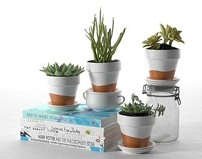 3D Pots with Plants Stack of Books and Bottle