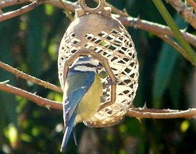 3D print model Bird feeder
