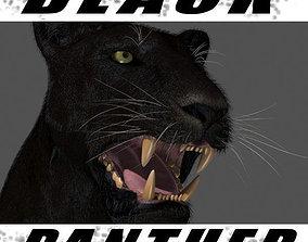 lion BLACK PANTHER - 3d model animated