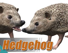 3D model animated Hedgehog