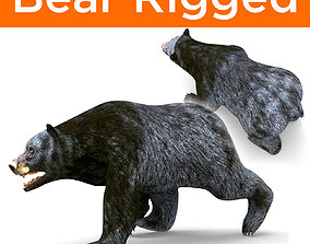 rigged Black Bear Rigged 3D Models
