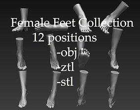 3D 12 Female Feet