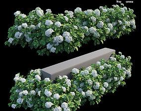 Hydrangea Plant set 28 3D model