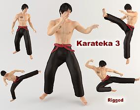 3D model Karateka 3