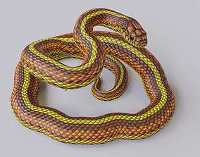 3D asset Rigged Yellow Snake
