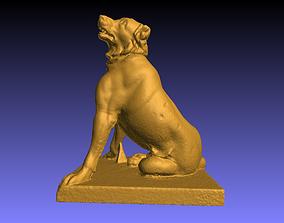 Dog scan model