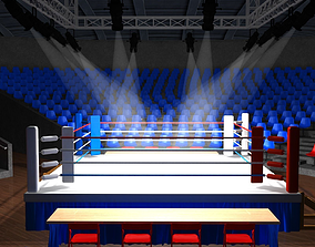 3D asset boxing ring