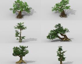 Banyan set 3D