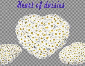 Heart of daisies 3D