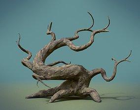 3D model Tree PBR