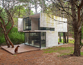 3D model Forest Modern Minimalist House