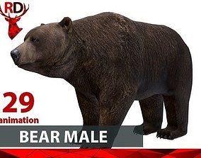 3D model BEAR MALE short
