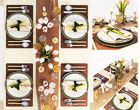 3D Table setting other