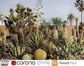 3D Tropical desert plant collection