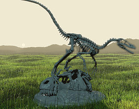 Velociraptor Skeleton Diorama with 3D print model
