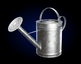 3D Watering Can Galvanized