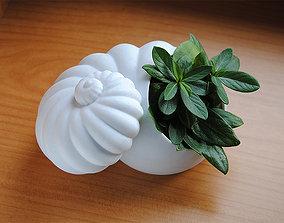 pot 3D printable model Shell planter