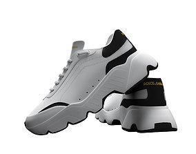 3D asset Shoes Low Poly Model