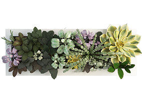 Vertical Plant Frame 80 x 30 cms 3D model