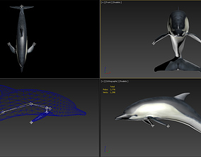 animated 3DMAX model-dolphin binding animation