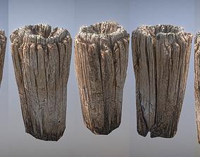 3D asset Wooden pole from a seaside