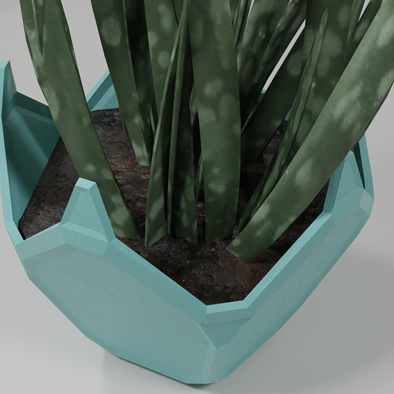 dodecahedron pot