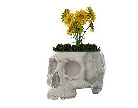 Skull Vase 3D printable model