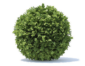 Spherical Hedge 3D