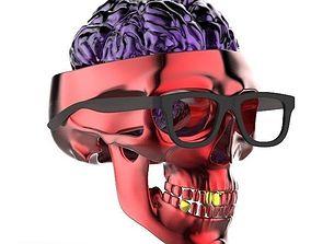 skull 3d model humans science