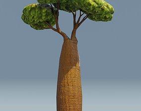 Cartoon Baobab Tree 3D Model low-poly