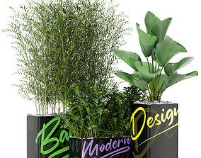 Plants collection 378 3D model