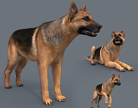 My Dog - 3d animated dog model animated realtime
