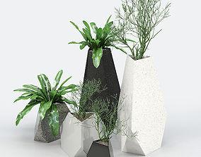 Treesquare Rockbound 01 3D model