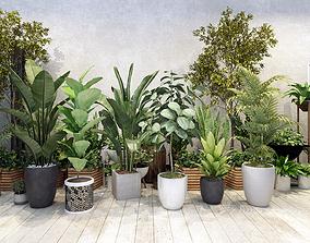 Plants 3D model realtime stem