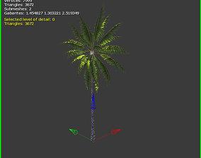 3D Palm Tree VR / AR ready
