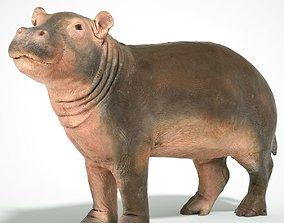3D print model Hippopotamus Baby