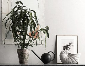 3D model Plant with Watering Can and Shell Pot
