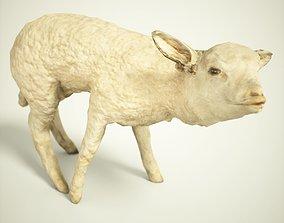 Lamb Photorealistic Posed 3D asset