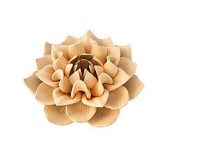 MODEL BEAUTIFUL FLOWER