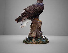WhiteTailed Eagle 3D model